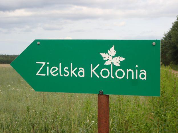 Zapraszam do Zielskiej Kolonii na Podlasiu!